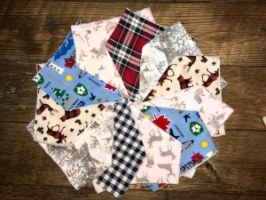 evergreenbabybibs